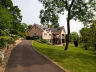 8 bedroom Detached property in Mopla Road, Tutshill...