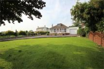 4 bedroom Detached Bungalow for sale in Tregarn Road, Langstone...