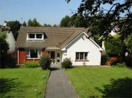 3 bed Detached Bungalow for sale in Crown Road, Llanfrechfa...