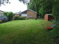 3 bed Detached Bungalow for sale in Friars Garden, CWMBRAN...
