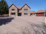 5 bed new home for sale in Sycamore Court, Henllys...
