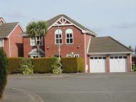 Detached property for sale in Hawkes Ridge, Cwmbran