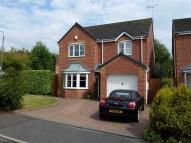 Detached property for sale in Sapphire Drive, Denby...