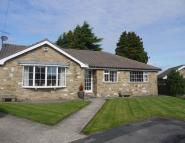 Detached Bungalow to rent in 6 Richmond Holt...