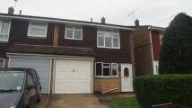 3 bed semi detached house in Langdale Close, Rainham...