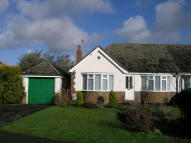 2 bed Semi-Detached Bungalow in Golden Miller Lane...