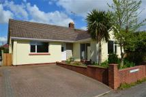 Bungalow to rent in Lyncott...