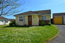 Bungalow in Holman Close, Dawlish