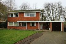 Detached home for sale in Ballygate, Beccles