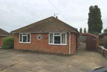 2 bed Detached Bungalow in Ship Road, Pakefield