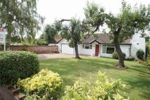 Detached Bungalow for sale in Moor End, Eaton Bray