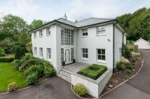 Detached home in Merstham