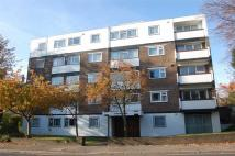 Flat to rent in 1 Carew Road, Eastbourne...