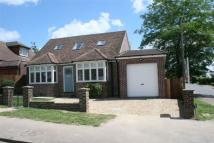 3 bed Detached Bungalow in Sibley Avenue, Harpenden