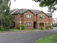 1 bedroom Flat in Douglas Gardens...