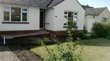 Bungalow in Ascot Road, Broadstone...