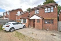 House Share in Woolacombe Drive, Earley