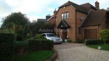 Beech Lane House Share
