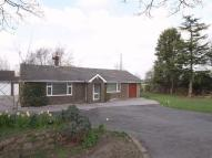 Detached Bungalow for sale in Littledales Lane...