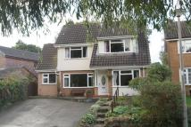 Detached home in Eildon, 13 Darkie Meadow