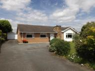 Bungalow in Acton Gardens, Wrexham...