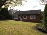 Bungalow for sale in Maes Collen, Llangollen...