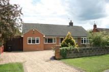 Bungalow to rent in Vicarage Lane...