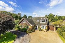 Detached home for sale in Bluehouse Lane, Oxted...