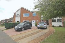 semi detached home in Stopsley