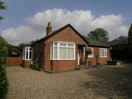 Detached Bungalow for sale in Beverley Road...