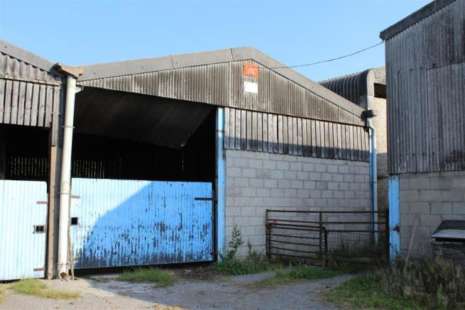 CATTLE SHED 1