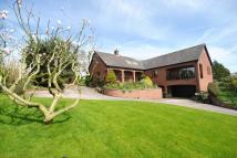 Marbury Detached Bungalow for sale