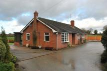 Detached Bungalow to rent in Oak Hollow, Whixall...
