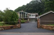 4 bedroom Detached home in Weston U Redcastle...