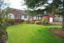 2 bed Detached Bungalow in Pear Tree Lane...
