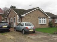 Semi-Detached Bungalow to rent in The Spinney...