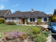 3 bed Detached Bungalow in Peakdean Lane, East Dean...