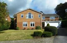 5 bedroom Detached home to rent in Larchmont Close...