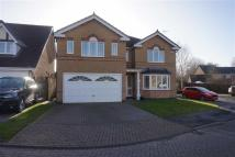 4 bed Detached house to rent in Spindlewood, Elloughton