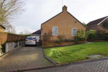 3 bed Detached Bungalow in Drovers Rise, Elloughton