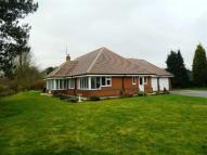 3 bedroom Detached Bungalow in Stockbridge Road...