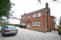 Royston Grove Flat to rent