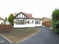 Bungalow to rent in Roundwood Close, HA4