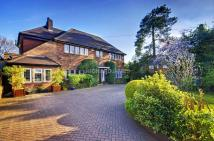 Marsh Lane Detached property for sale
