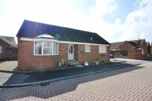 Detached Bungalow in Dalby Mead, Huntington Rd