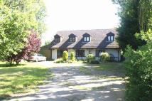 Detached house for sale in Wickford, SS11