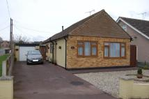2 bed Detached Bungalow in Runwell, Wickford, SS11