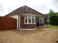 Egbert Gardens Detached Bungalow for sale