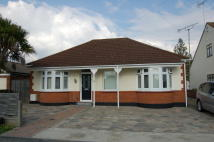 Detached Bungalow in CEDAR AVENUE, Wickford...