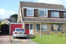 3 bedroom semi detached home in Pine Close, Street